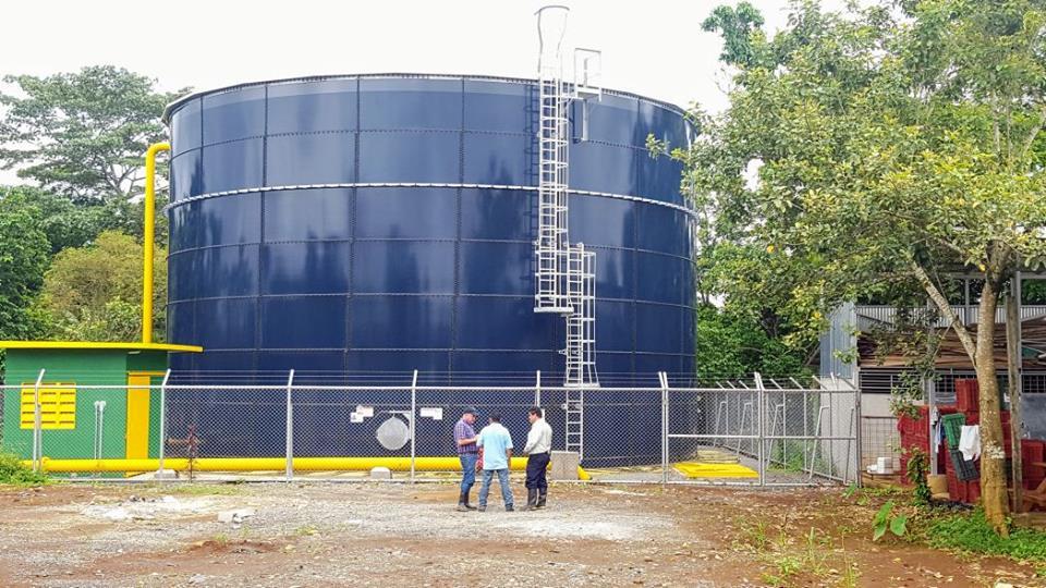 11 comunidades de Pital estrenan mega acueducto