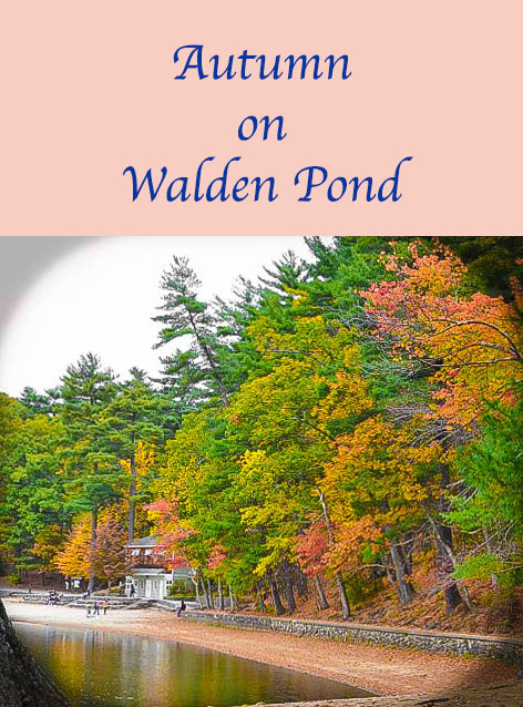 Walden Pond today looks much as one would imagine it when Thoreau lived there.