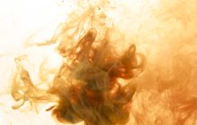 కవి హృదయం లో వైశ్విక స్పృహ గురించిన దార్శనికత
