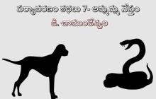 పర్యావరణం కథలు-7: అమ్మమ్మ నేస్తం