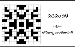 పదసంచిక-30
