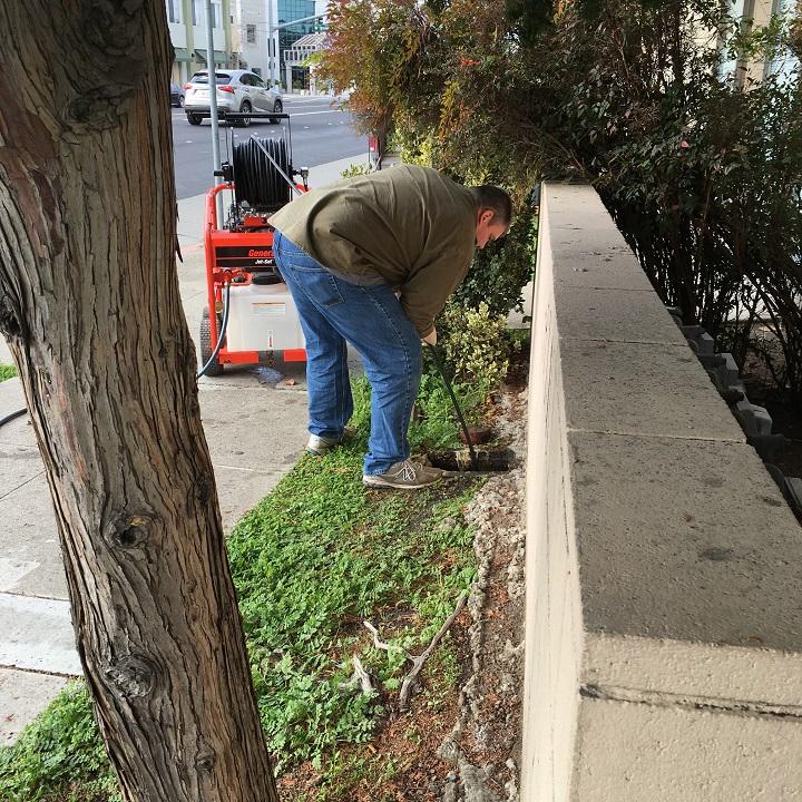 Drain Cleaning Plumbing In Redwood City Sanctified