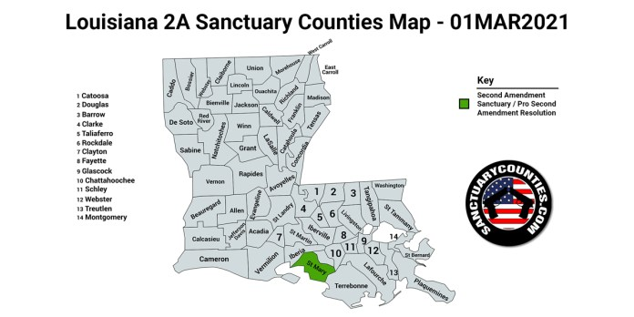 Louisiana Second Amendment Sanctuary State Map