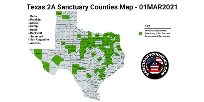 Texas Second Amendment Sanctuary State Map
