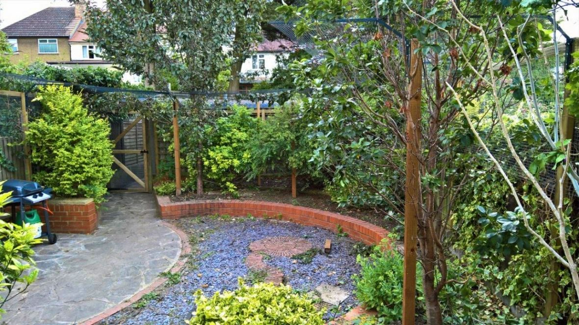 cat fencing in mature garden with trees