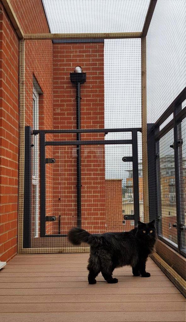 Cat balcony enclosure