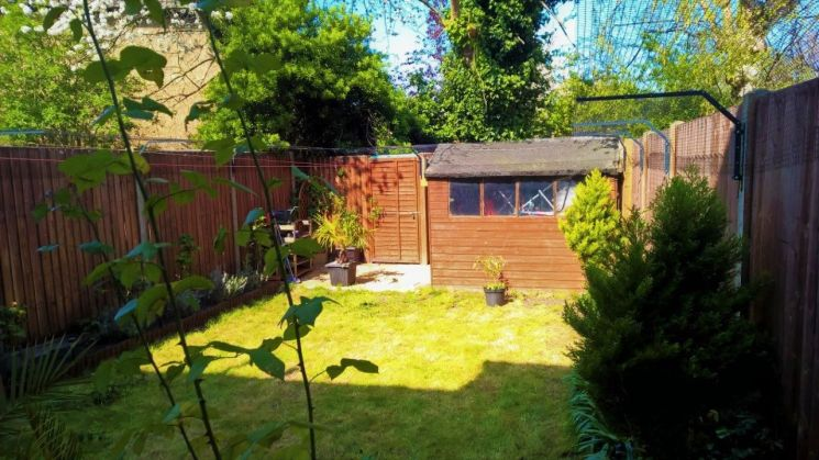 cat proof barriers for garden