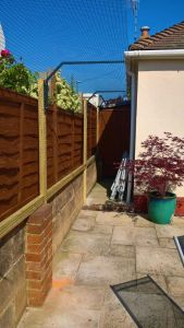 Low Wall Extended Cat Proof Fencing Brighton