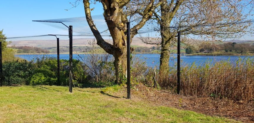 Tree barrier cat fencing to keep cats safe