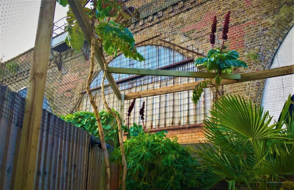 Cat Enclosure to Keep Cats in Garden London