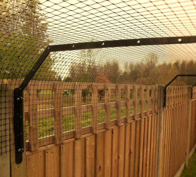 Cat fence brackets
