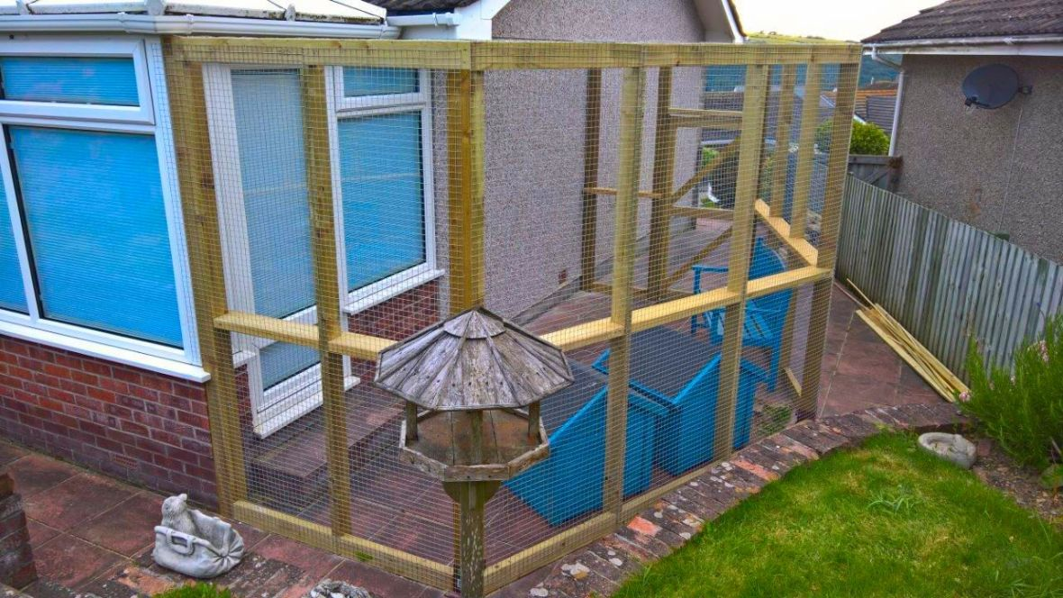 Catio for cats