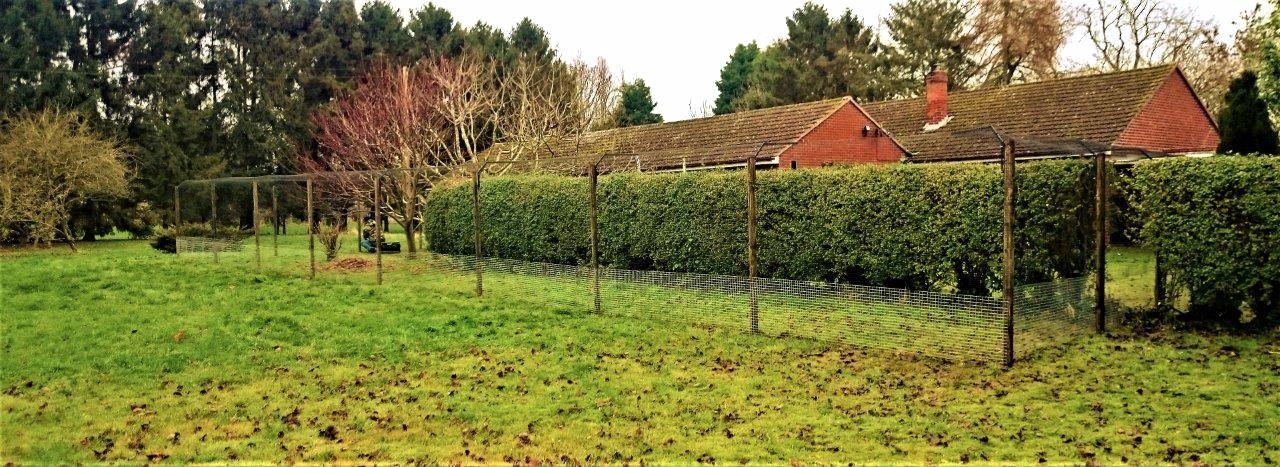 Cat fencing for garden