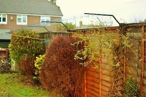 Cat proof garden in England
