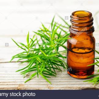 Tea Tree Essential Oil-50mls-100% (Melaleuca Alternifolia)