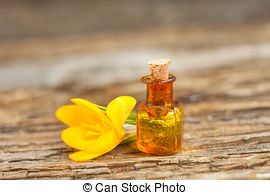 Crocus fragrance oil-15mls