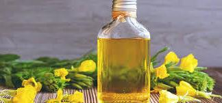 Evening Primrose Oil-30mls-Emoillent-Carrier Oil(Oenothera Biennis)Carrier
