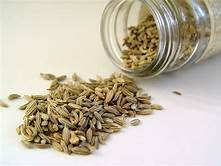 Fennel Seeds Whole – 100g