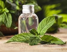 Peppermint-Essential Oil-10mls(Mentha x piperita)