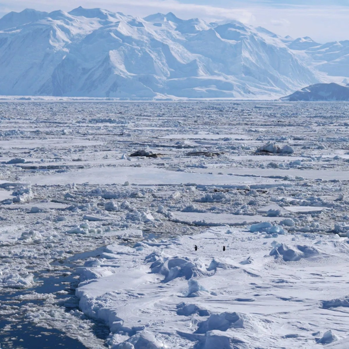 Antarctica Desert