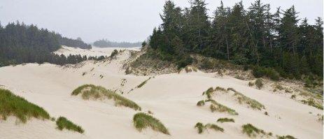 Oregon Dunes National Recration Area