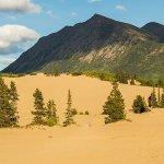 Sandboarding in Canada