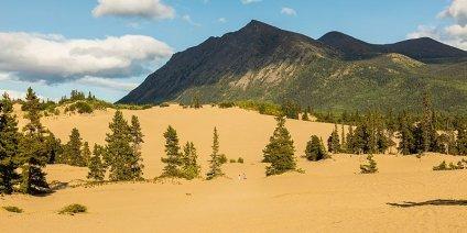 Carcross Desert Sand Dunes Canada