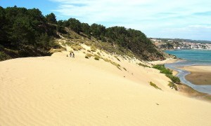 Sandboarding at Salir do Porto, Portugal
