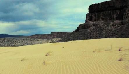 Vantage Sand Dunes Washington