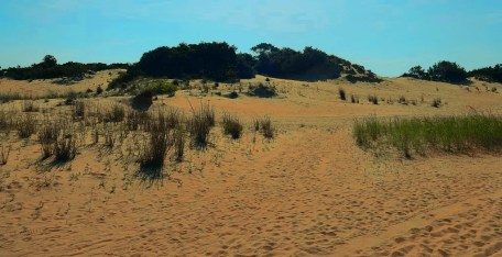 Dunes at Jockey's Ridge State Park near Nags Head, North Carolina