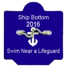 SB 2016 Beach Badge