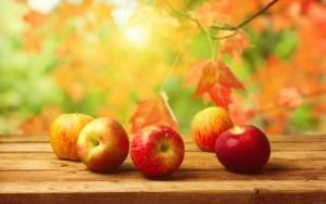 Пять правил осенней диеты и меню