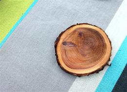branch-coasters-4