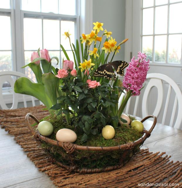 How to make a tabletop garden