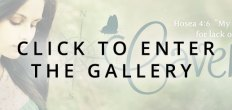 Add-Ons Enter Gallery (Bookmarks)