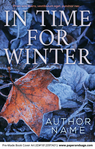 Pre-Made Book Cover ID#181209TA01 (In Time for Winter)