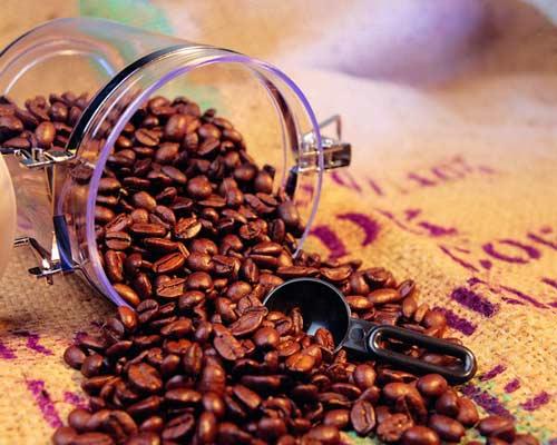 kopi luwakis coffee