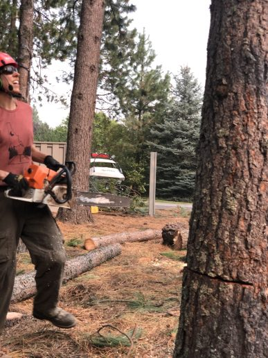 Jen Quintano completes her backcut and steps out of the way as the lodgepole falls
