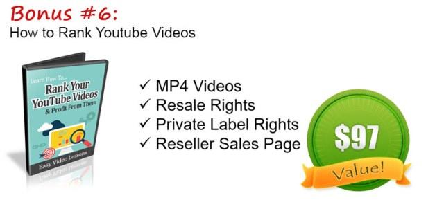 amazing video stock firesale download