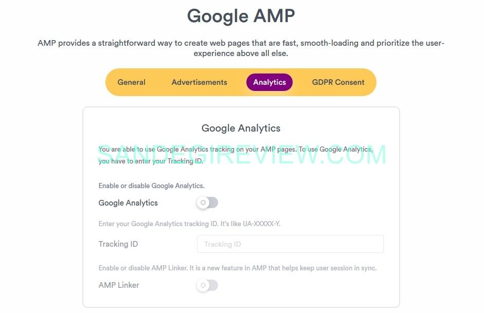 speedii amp analutics feature 1