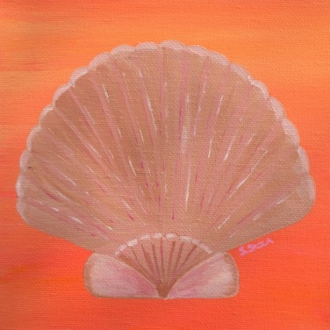 Orange Scallop Shell
