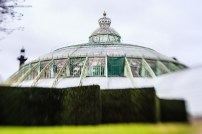 The oldest Greenhouse: with crown