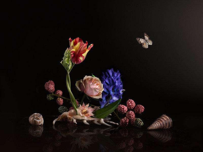 Love is in the shell een prachtig bloemstilleven op een plexiglas gefotografeerd. Een waar kunstwerk. Dit bloemstilleven kunt u kopen bij sandervanlaar.werkaandemuur.nl op elk formaat en materiaal wat u maar wilt hebben.