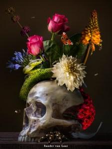 Royal Skull een prachtige bloemstilleven voor in uw huis of kantoor