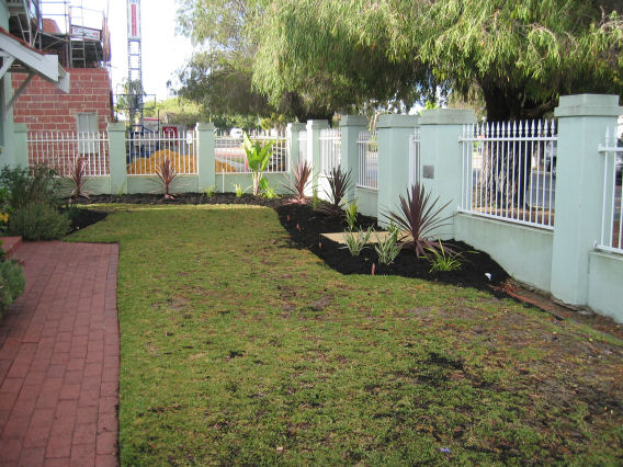 Front garden - after