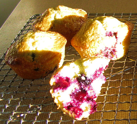 The *best* Blueberry Muffin recipe (2/2)