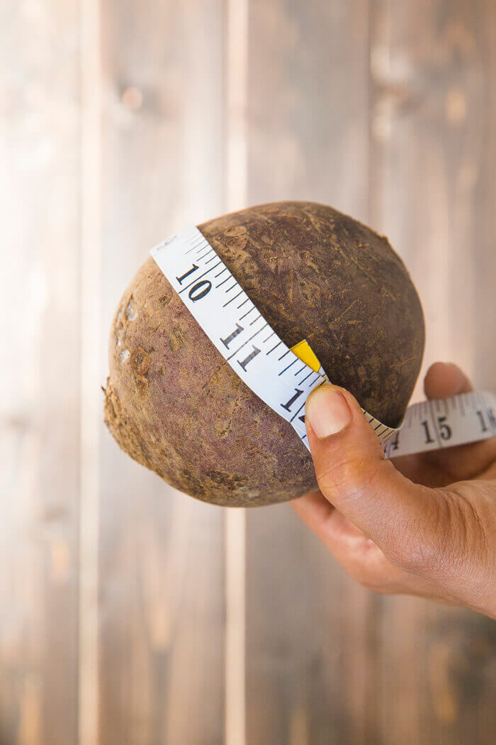 Measure the beet circumference