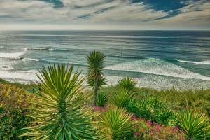 San Diego Sustainable Landscapes Program Follows Watershed Approach