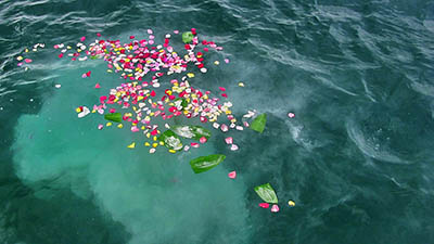 Ashes being scattered at sea