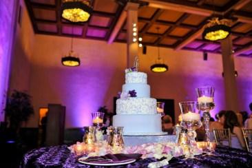 san-diego-cake-pinspot-lights-with-purple-uplights